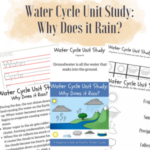 Limited Time Freebie: Water Cycle Unit Study