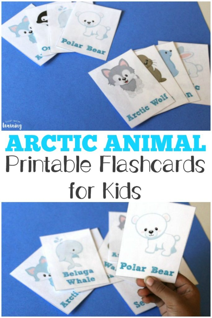 If you're studying the arctic and its animals, these printable flashcards are perfect. Simply print them and use them for a fun review or memory game with the kids. :: www.thriftyhomeschoolers.com