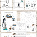 Penguin Life Cycle Freebie