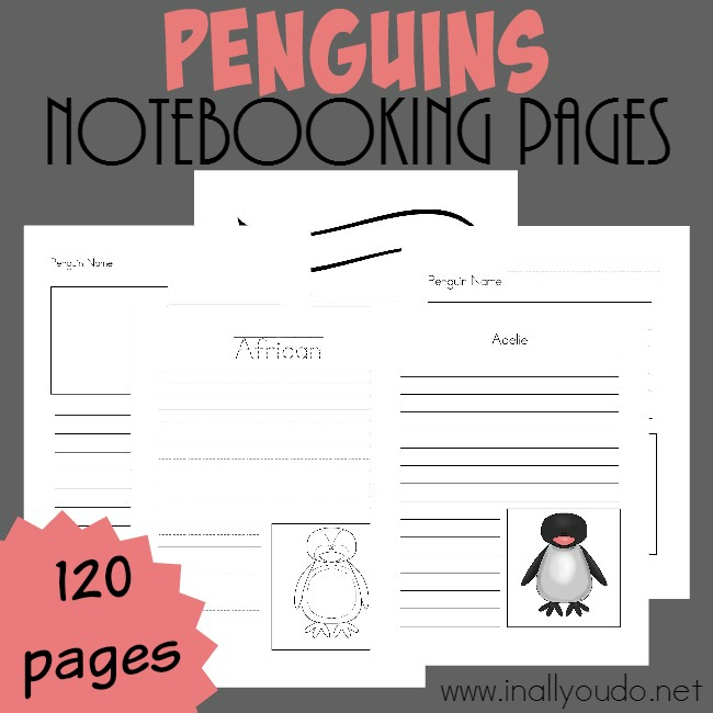 If you're studying penguins this winter, these notebooking pages would be a great addition to your unit. You can use them generically or to research specific penguins. :: www.thriftyhomeschoolers.com