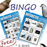 Antarctic BINGO Printables Freebie