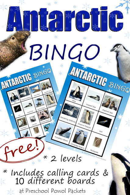 My kids love playing BINGO and it is a great way to review different subjects in a fun, interactive way. These printable Antarctic Animals BINGO cards are perfect for winter or to add to an Arctic Unit study! :: www.thriftyhomeschoolers.com