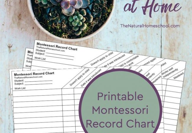 Teaching Montessori at Home + Montessori Curriculum Free Download