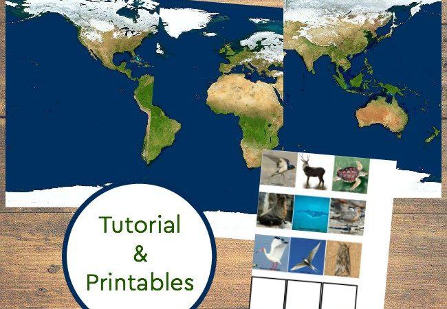 How to make a Migration Diorama + Printables