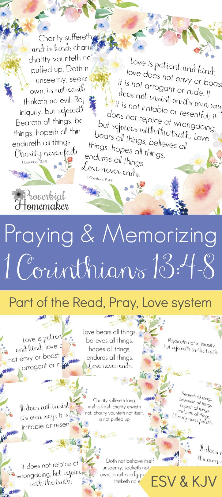 The Scripture Memory Printable for the month of February is I Corinthians 13:4-8, which seems fitting with Valentine's Day this month. These printables are available in both ESV & KJV, so grab the one you want to memorize and pray over this month. :: www.thriftyhomeschoolers.com