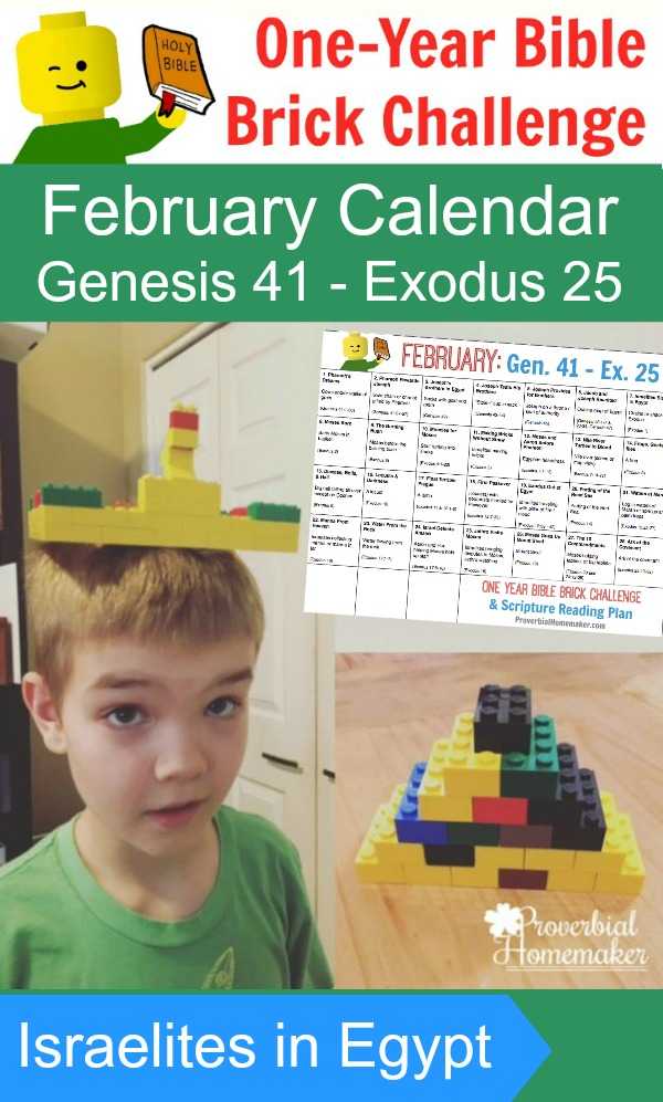 Whether you participated in the January Bible Brick Challenge you can certainly jump in during the month of February! These daily brick challenges are a fun way to get kids involved in the Bible reading and help them remember the lessons too! :: www.thriftyhomeschoolers.com