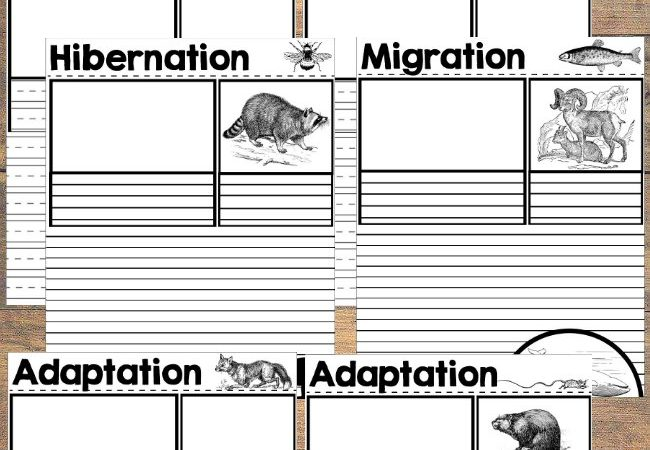 Printable Hibernation, Migration and Adaptation Notebooking Pages