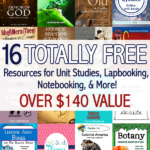 Limited Time ~ Unit Studies Bundle ($140 Value)