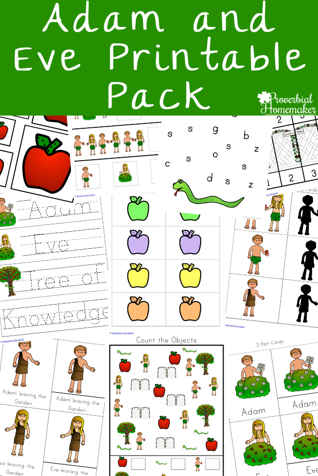 The story of Adam and Eve is a well-known story and an important one for children to learn. This Adam and Eve Printable Pack goes alongside this story of the first two people and how sin entered the world and corrupted God's creation. :: www.thriftyhomeschoolers.com