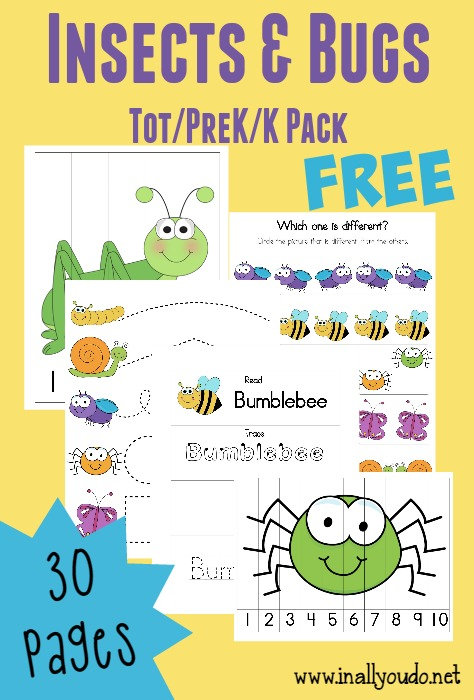 Little ones love to learn about insects and bugs. Even if they don't want to touch them, they are fascinated by them. This adorable Tot & PreK-K Pack and Emergent Readers combo are perfect for Spring! :: www.thriftyhomeschoolers.com