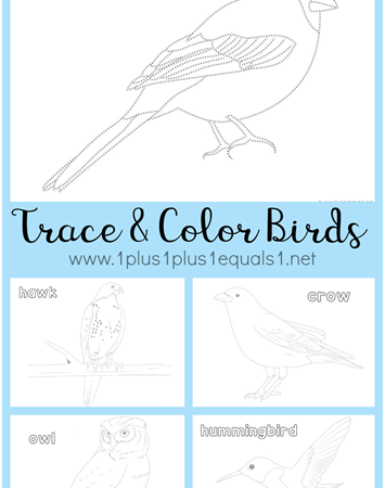 FREE Bird Trace & Color Printables