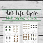Ant Life Cycle Multiplication Cards