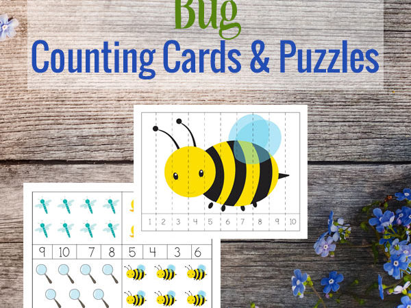 Bug Themed Counting Cards and Puzzles