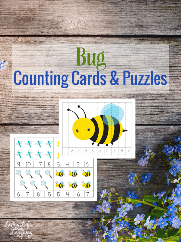 Bugs are always active in the spring and summer. Use these adorable Bug Counting Cards & Puzzles to help your little ones work on their skills! :: www.thriftyhomeschoolers.com