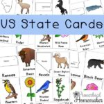 US State Cards