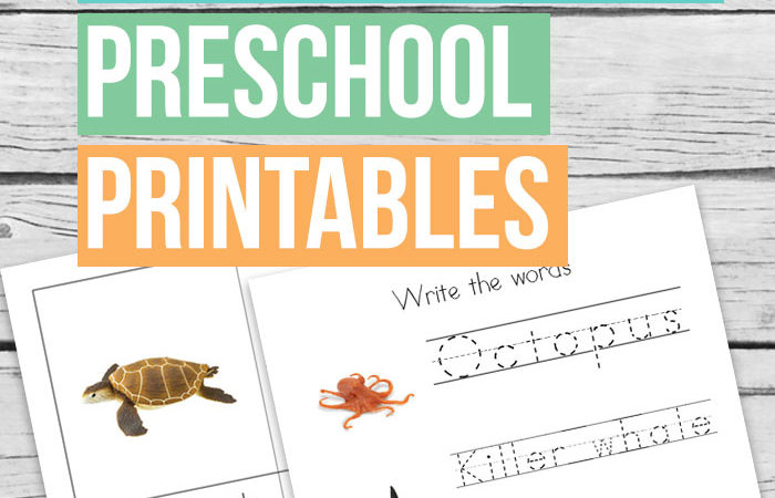 Safari Ltd Ocean Animals Preschool Printables
