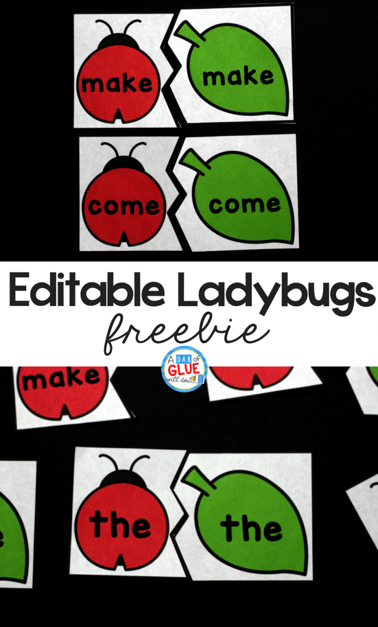 If you are looking for a versatile puzzle game to help teach your young reader then you are gonna love editable ladybug themed puzzle set. Now you can have the words that you are actually working on with cards they already love!