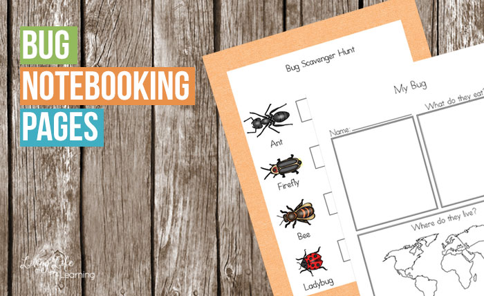 If you have a bug lover or if you intend on having a bug unit anytime soon you are going to love these notebookingpages.They can record what they find out about their bug's diet, habitat, predators and you also get the chance to get creative with the writing and drawing pages. The possibilitiesare endless.