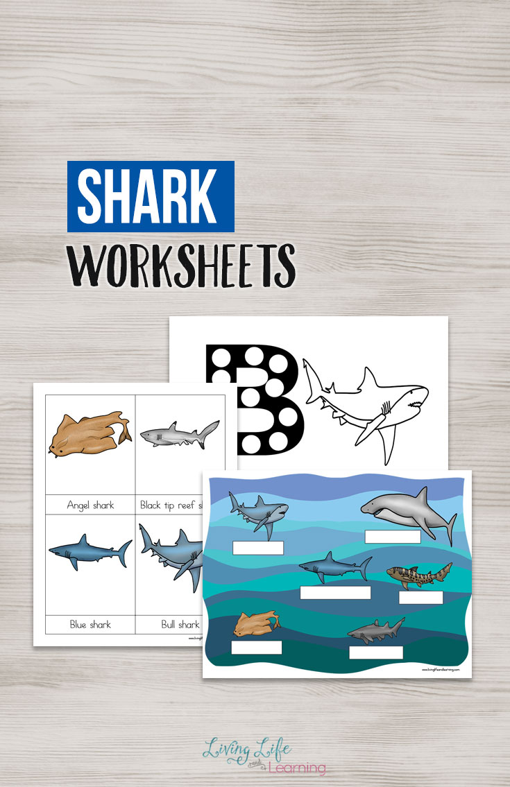 If you have an ocean lover, a shark lover or are preparing for shark week, you are going to want this printable pack that is filled with activities for your young learner!