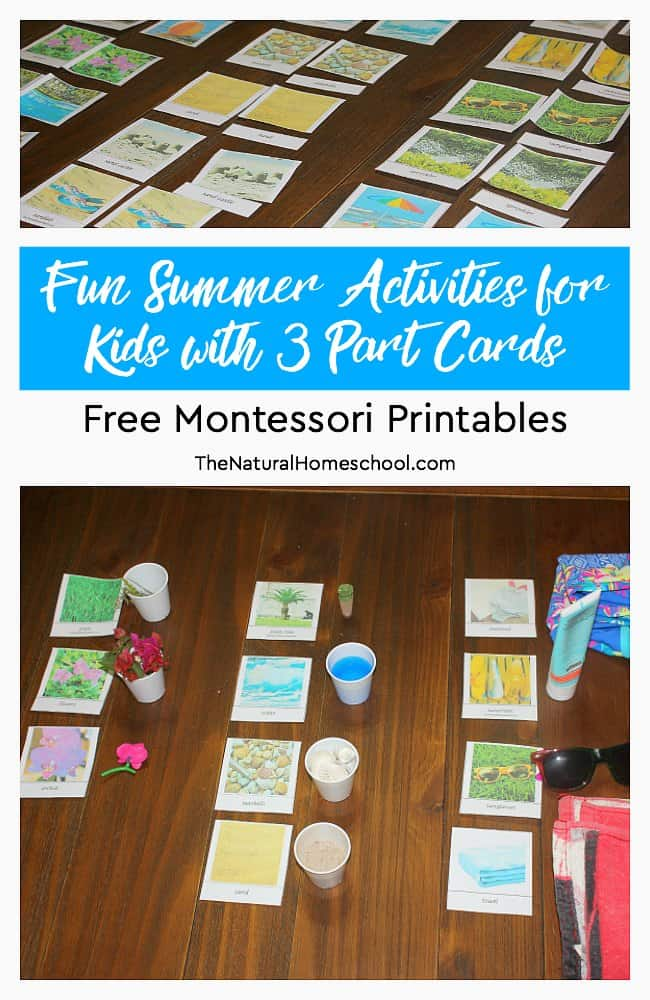 Families will love these fun Summer activities for kids with 3 Part Cards! They include free Montessori printables to print and have fun!