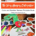 The Very Hungry Caterpillar Book Printable
