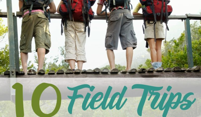 10 Field Trips Anyone Can Do