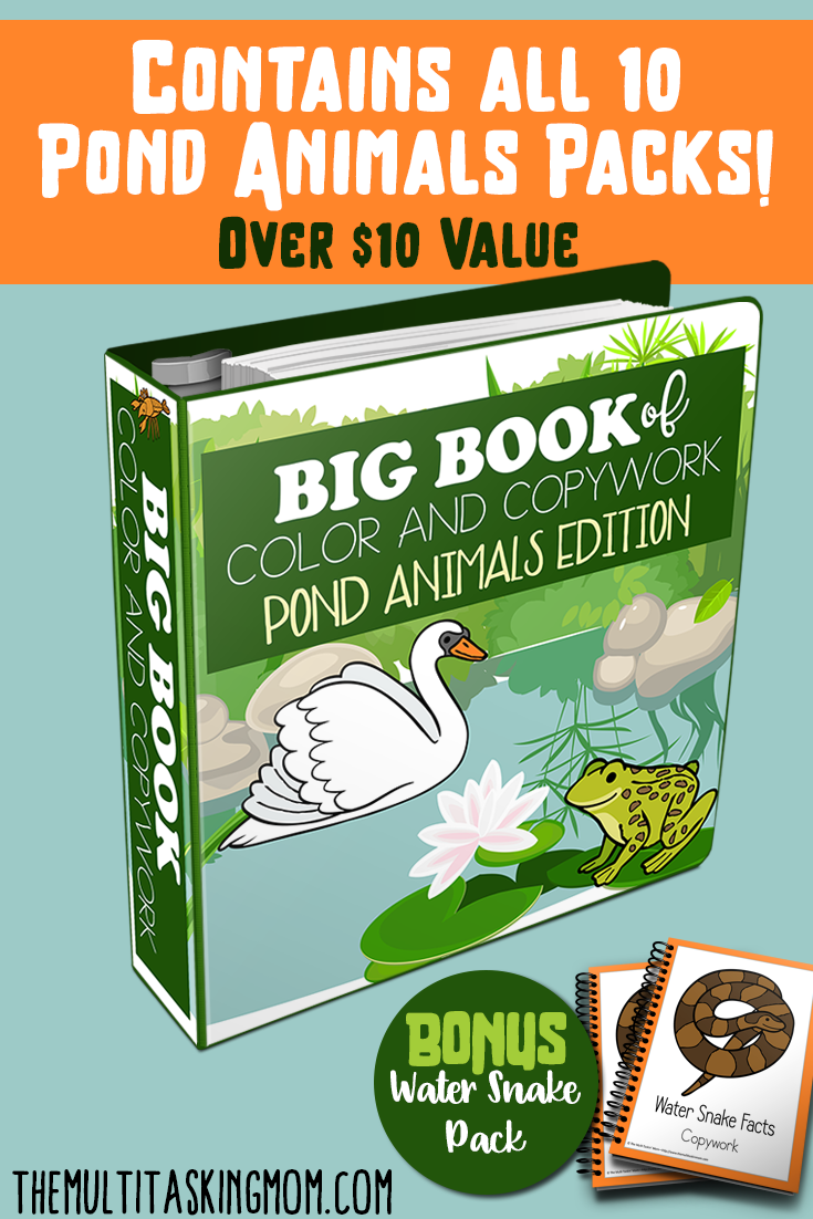 If you're studying all about lakes and ponds this year, you don't want to miss this HUGE freebie! It includes 10 color and copywork packs, plus a bonus pack all about pond animals! But hurry...this is only a limited time offer! :: www.thriftyhomeschoolers.com