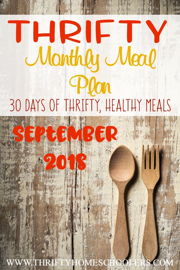 We have done it again! A month of healthy, tasty and filling meals that won't break the bank! We've also included some breakfast, snack and lunch ideas to give you inspiration! :: www.thriftyhomeschoolers.com