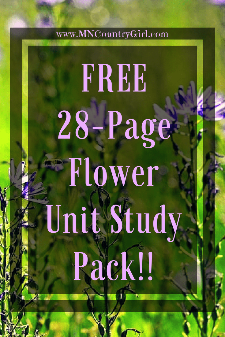 Flower Unit Study Pack