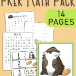 Guinea Pig Preschool Math Pack