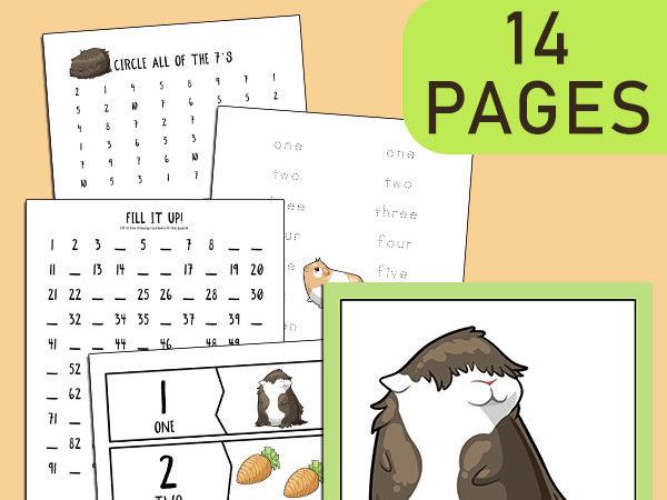 Guinea Pig Preschool Math Pack