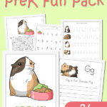 Guinea Pig Preschool Fun Pack