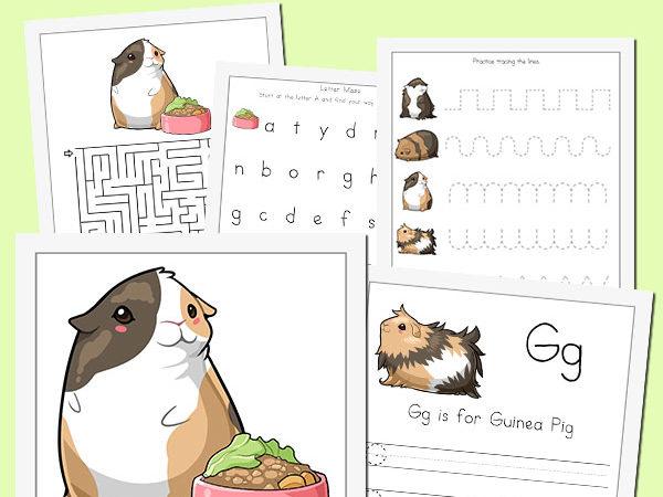 Guinea Pig Preschool Fun Pack