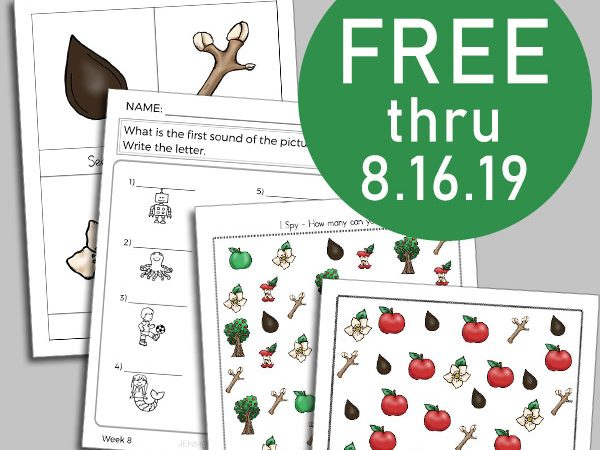 Life Cycle of an Apple Tree Workbook