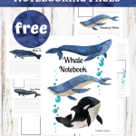 Whale Notebooking Pages Freebie